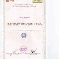 Ahnentafel Hasko
